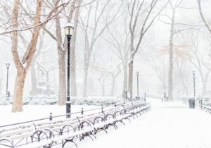 nyc during snow
